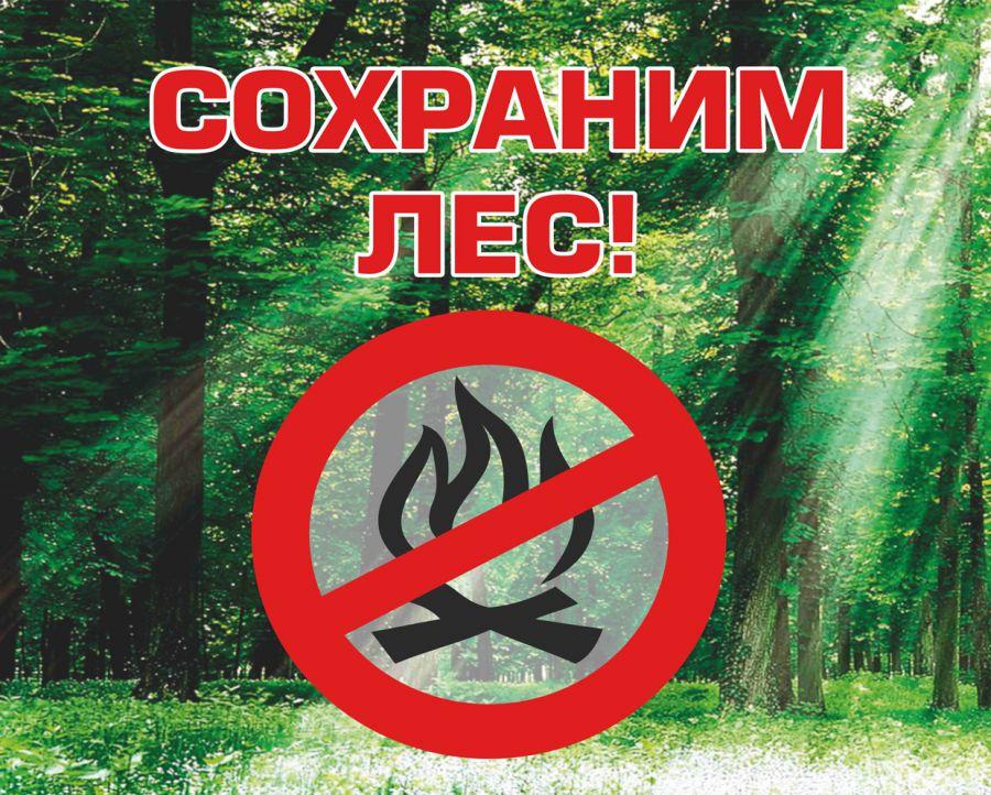 информационная табличка сохраним лес