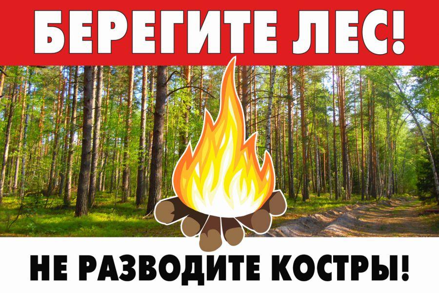 информационная табличка берегите лес не разводите костры